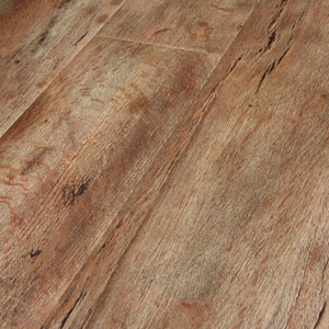 drift wood maple